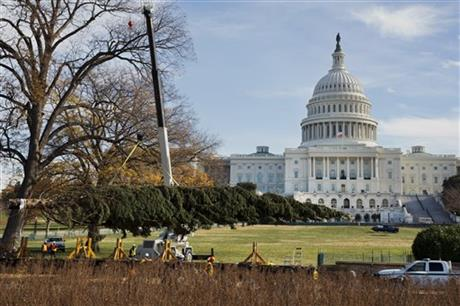 Capitol Christmas tree arrives in Washington, DC