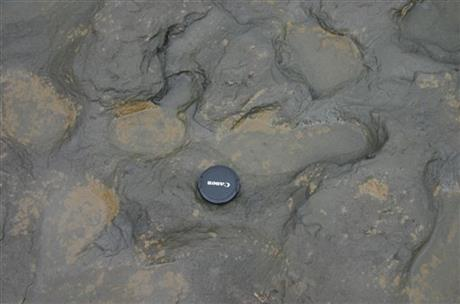 SCIENTISTS FIND 800,000-YEAR-OLD FOOTPRINTS IN UK