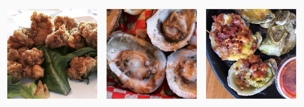 oyster recipe newsletter