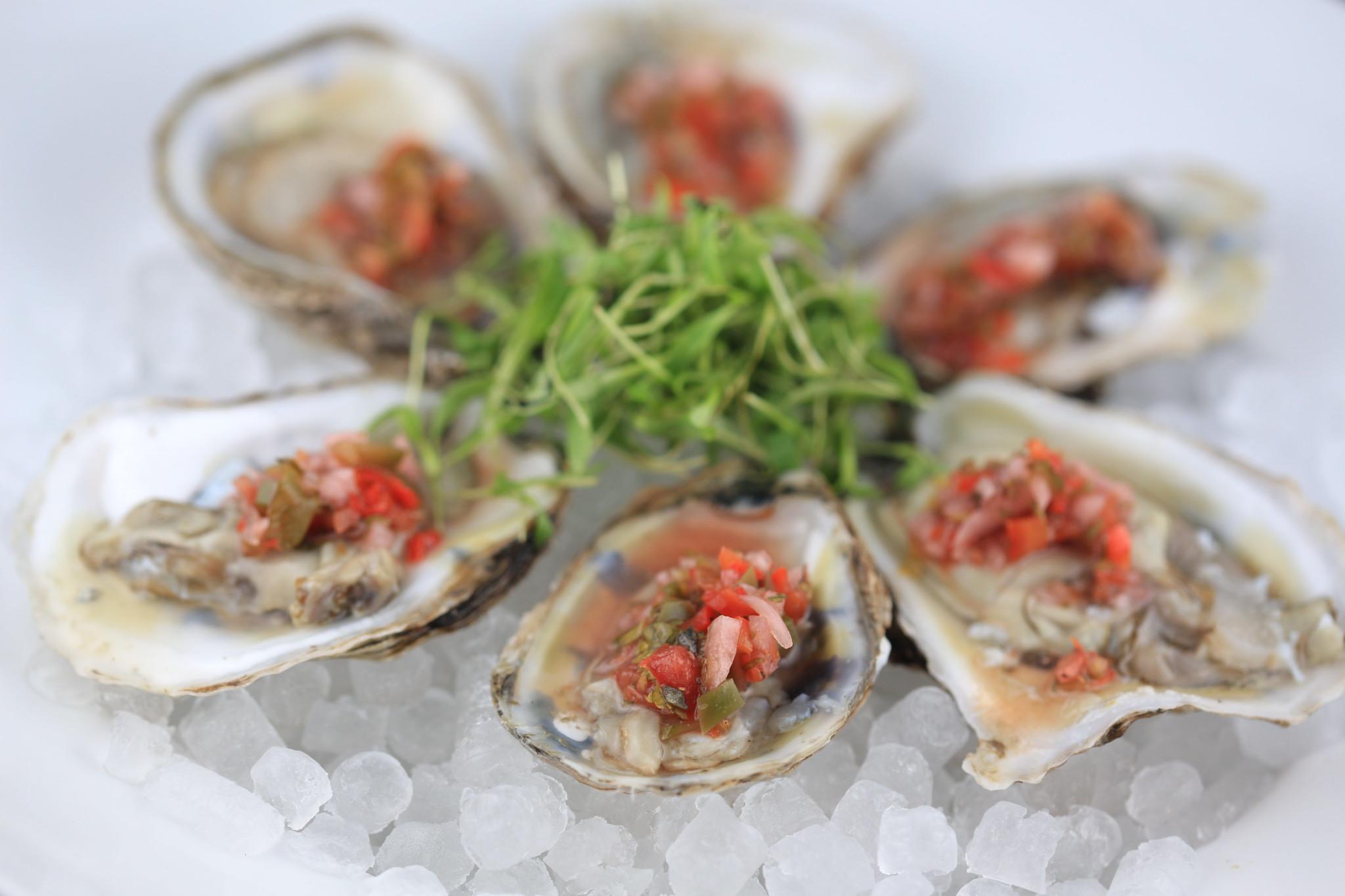 Oyster mignonette recipes