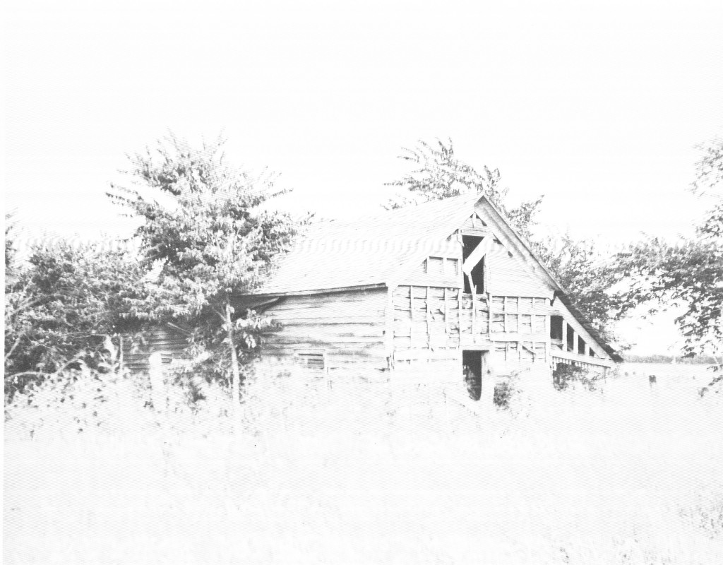 After the cabin was abandoned by the family, it was repurposed as a hay barn. This is how the cabin appeared before it was moved to City Park and restored.