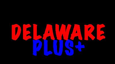 Firma Delaware