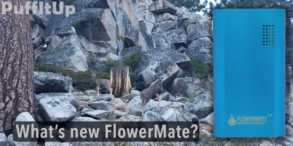 Whats New Flowermate Blog Post