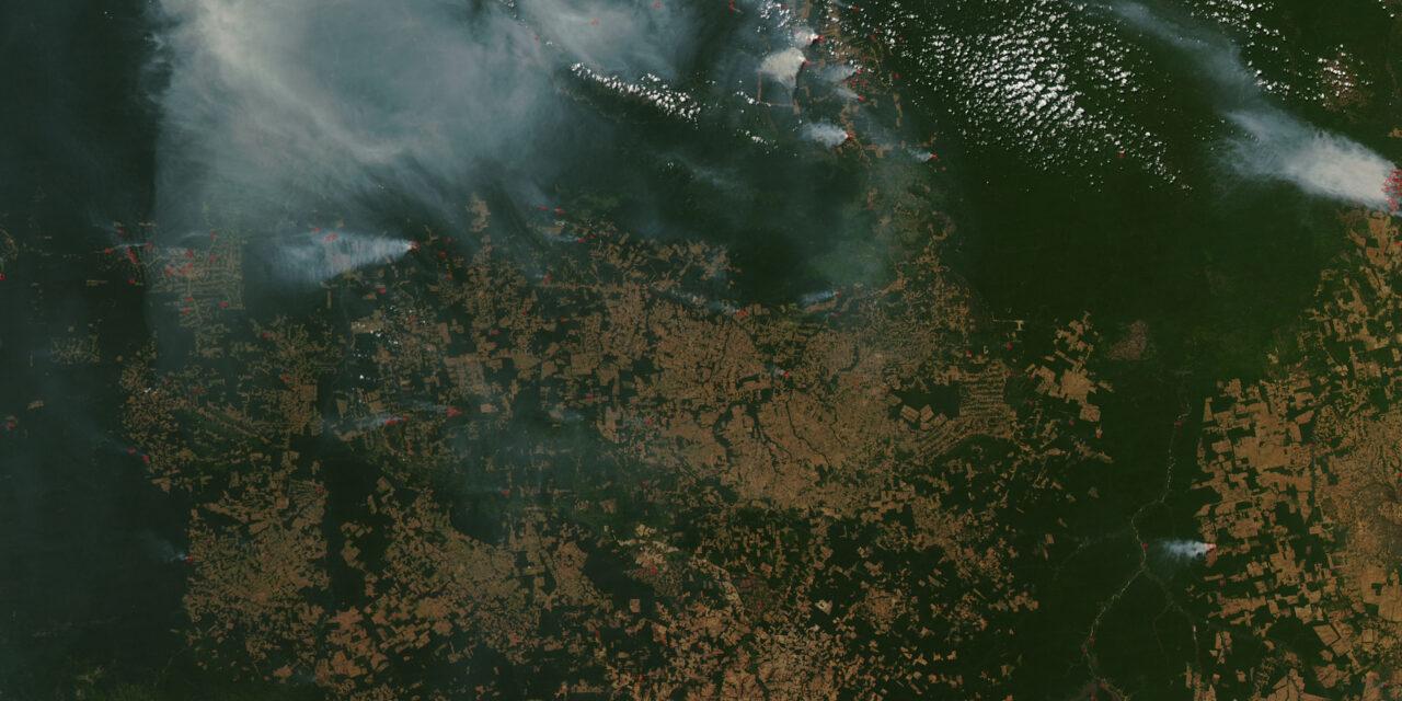 Brazil's Days of Fire