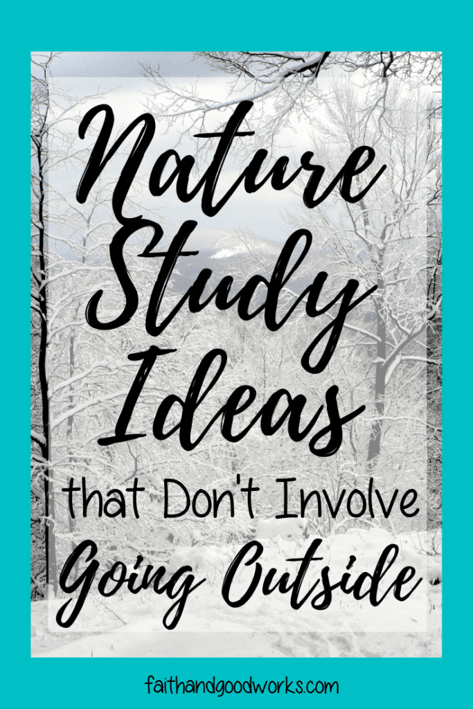 nature study ideas