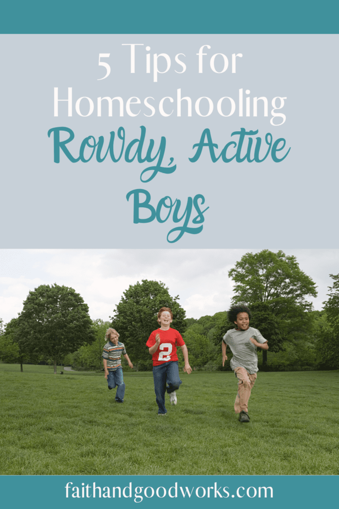 homeschooling rowdy active boys.