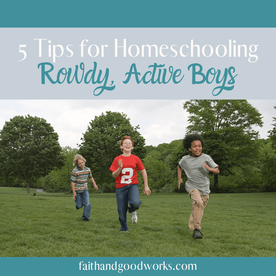 homeschooling rowdy active boys