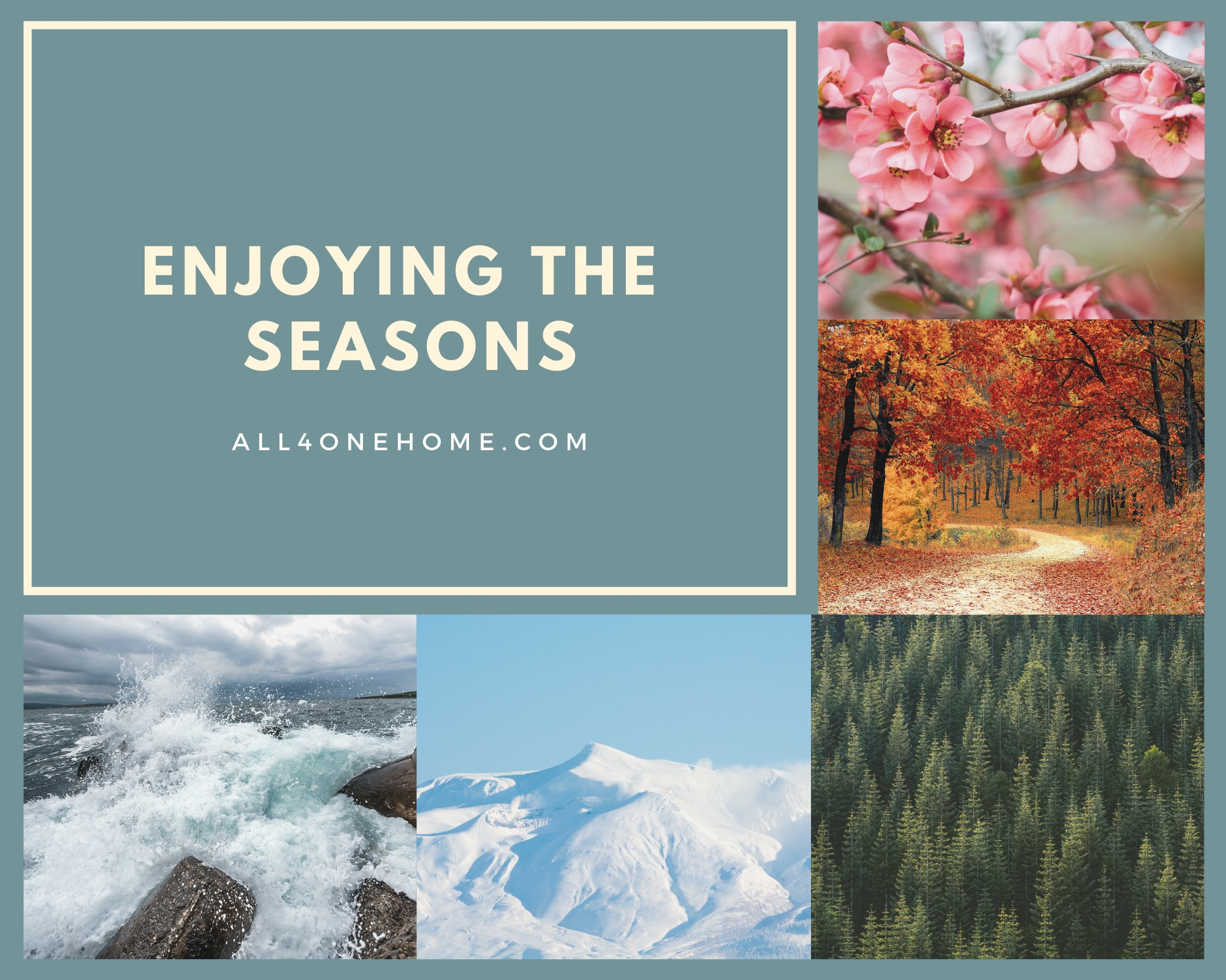 Enjoying The Seasons