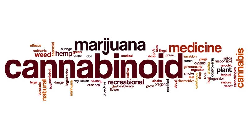 Getting to Know Your Cannabinoids– round up