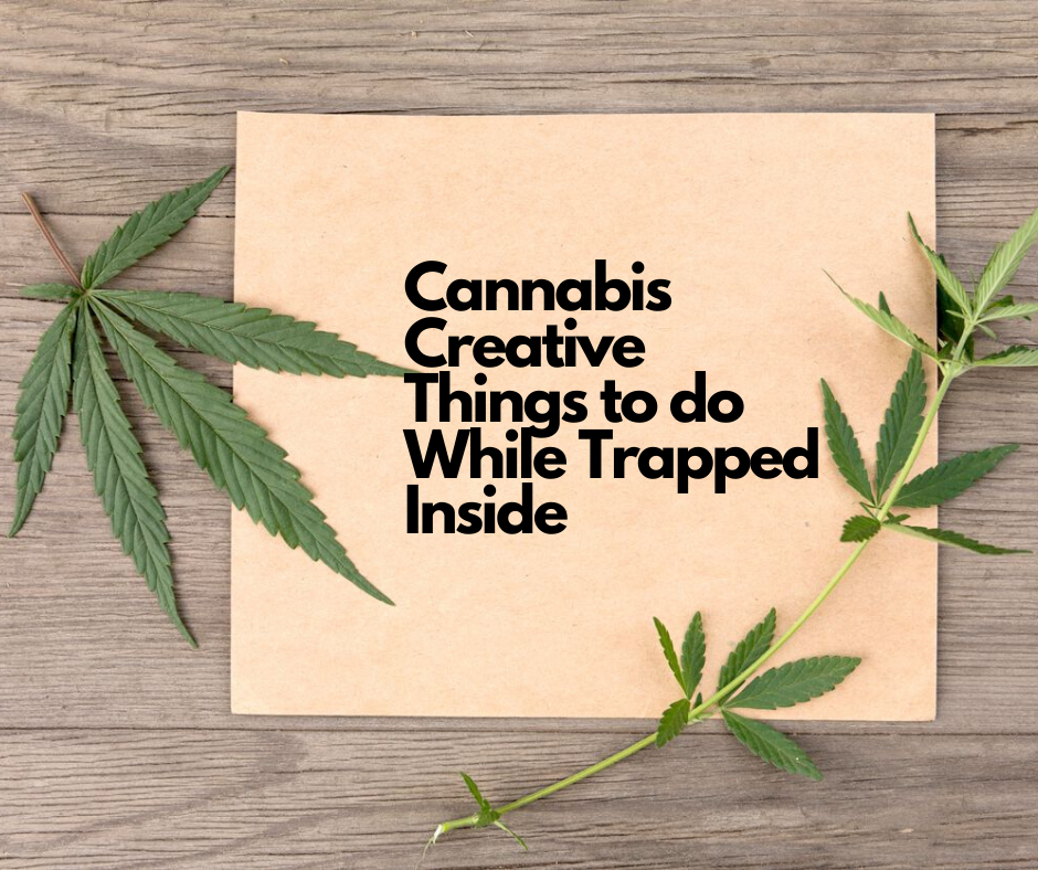 5 Cannabis Creative things to do While Trapped Inside