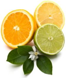 in season fruits