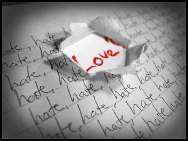 Things I Love vs. Things I Hate.