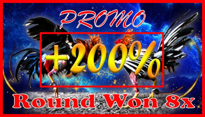 agen sabung ayam s128 - promo sabung ayam round won 8x