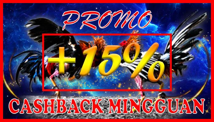 agen sabung ayam s128 - promo sabung ayam cashback - 06-05-2019