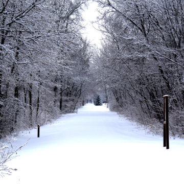 021219_jane-addams-trail-winter-2