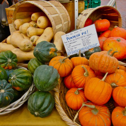 At the Copley Square Market: A Photo Montage