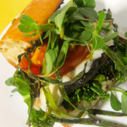 Mediterranean Grilled Vegetable Sandwich with Pesto and Two Cheeses