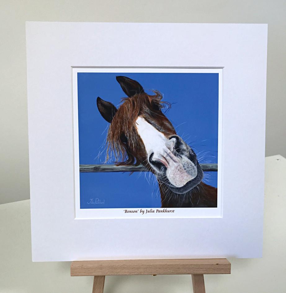Benson Horse Pankhurst Gallery
