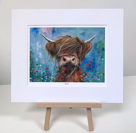 Bruce Highland Cow Pankhurst Gallery