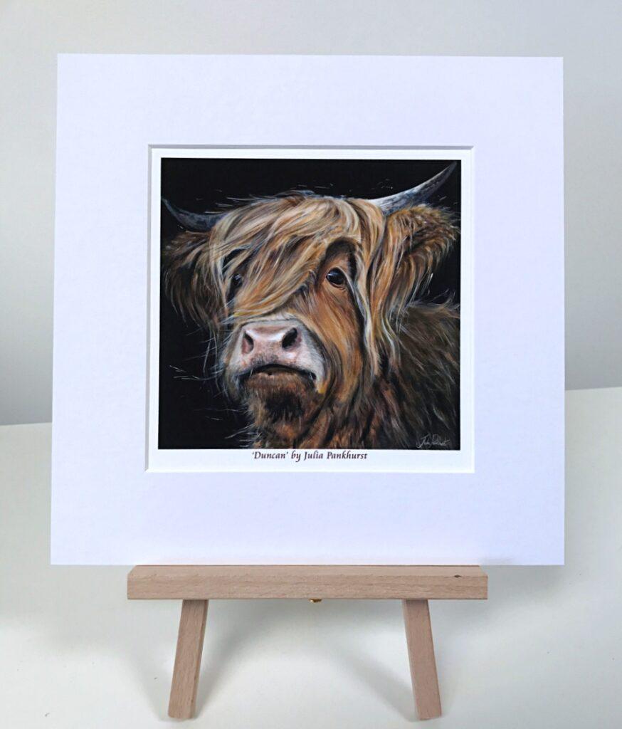 Duncan Highland Cow Pankhurst Gallery