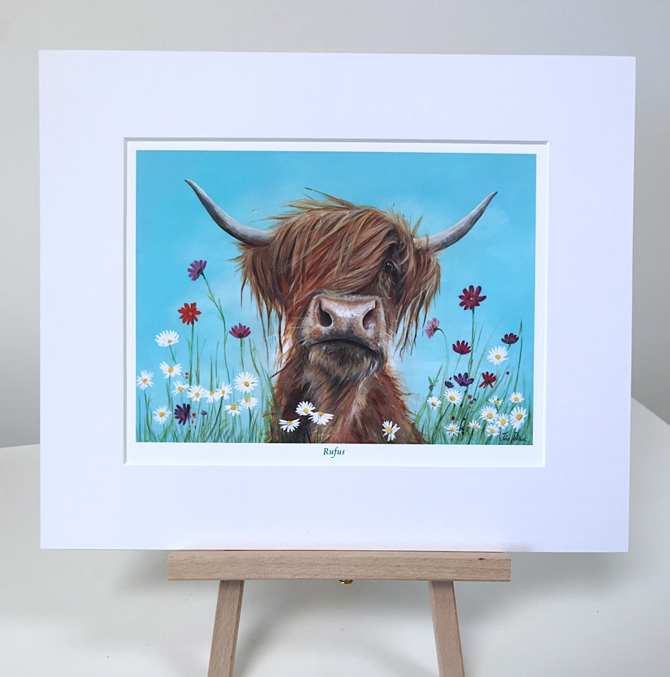 Rufus Highland Cow Pankhurst Gallery