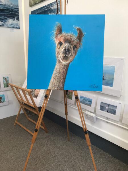 Dilbert Alpaca Pankhurst Gallery