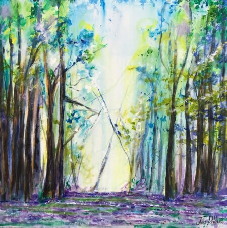 Bluebell Trail Woodland, Pankhurst Gallery
