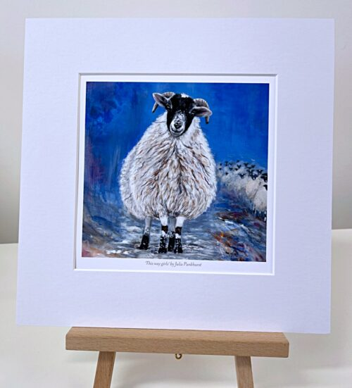 This Way Sheep Animal Art Gift Print Pankhurst Gallery