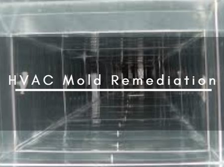 HVAC Mold Remediation