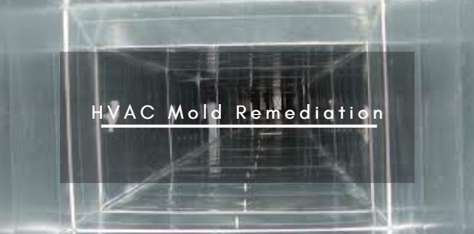 HVAC Mold Remediation