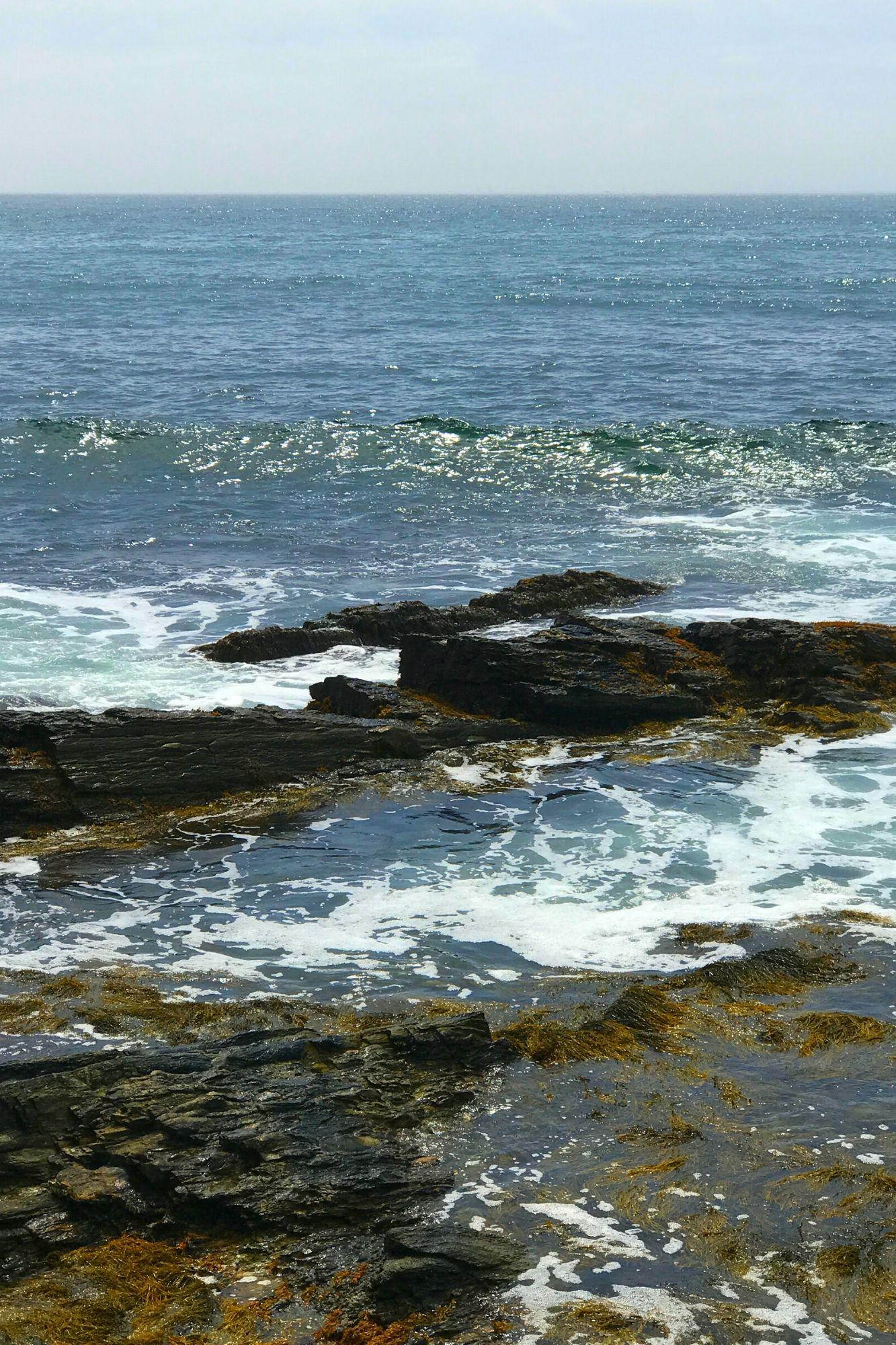 Cliff Walk in Newport Rhode Island-12