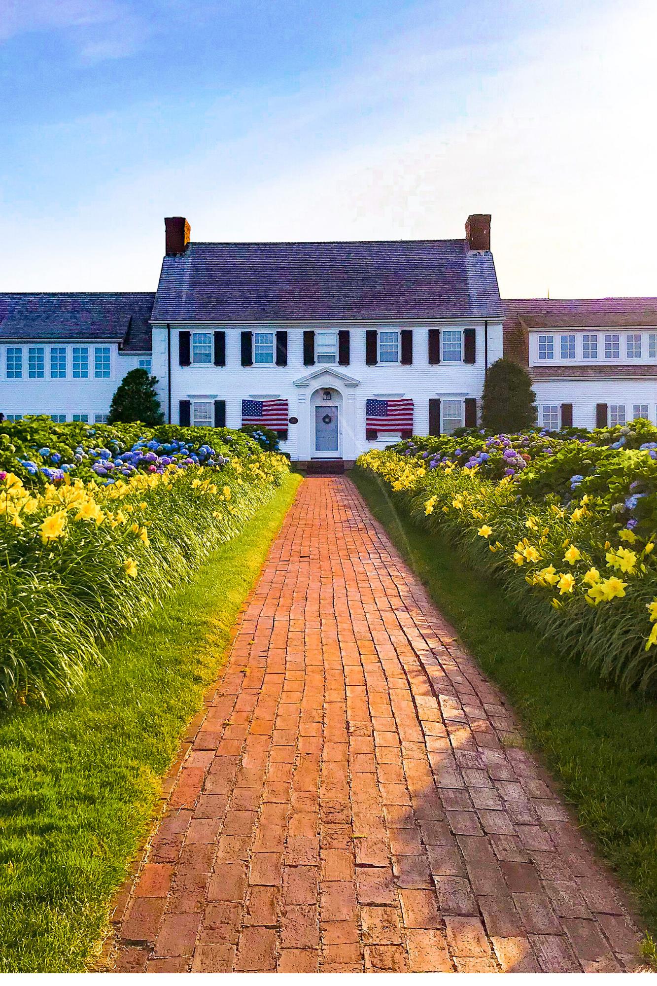 Hydrangea Walk in Chatham