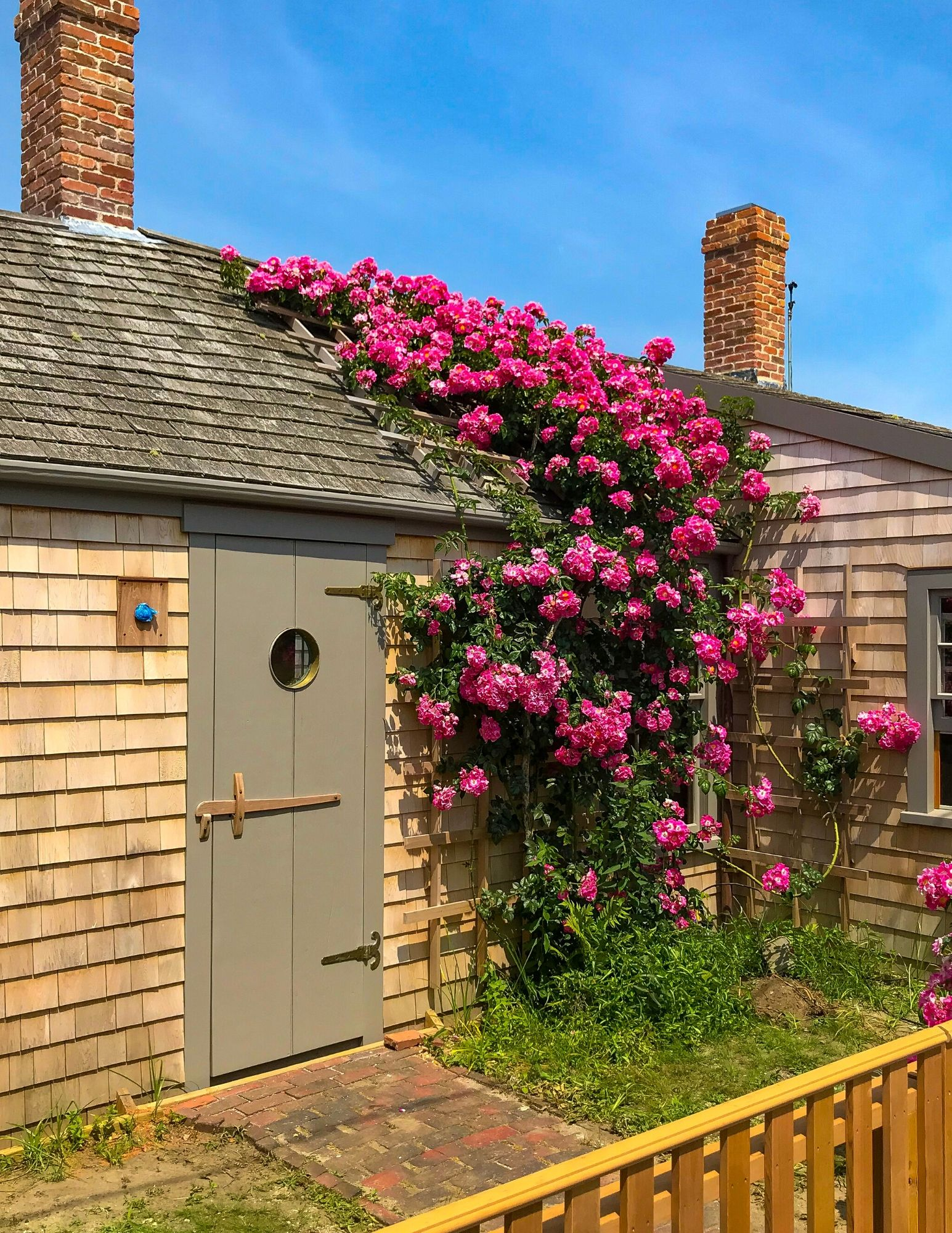 Nantucket Rose Covered Cottages in Sconset-17