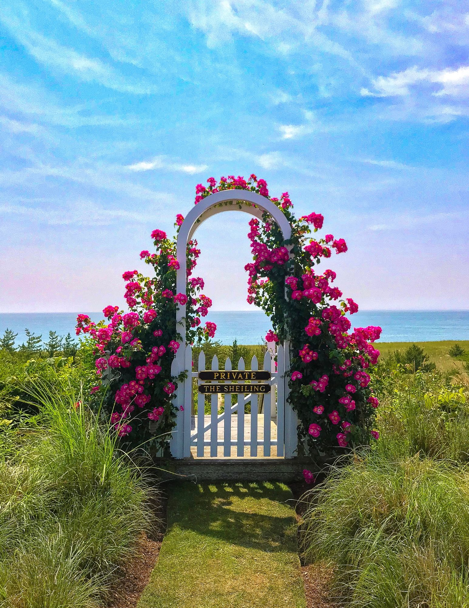 Nantucket Rose Covered Cottages in Sconset-22