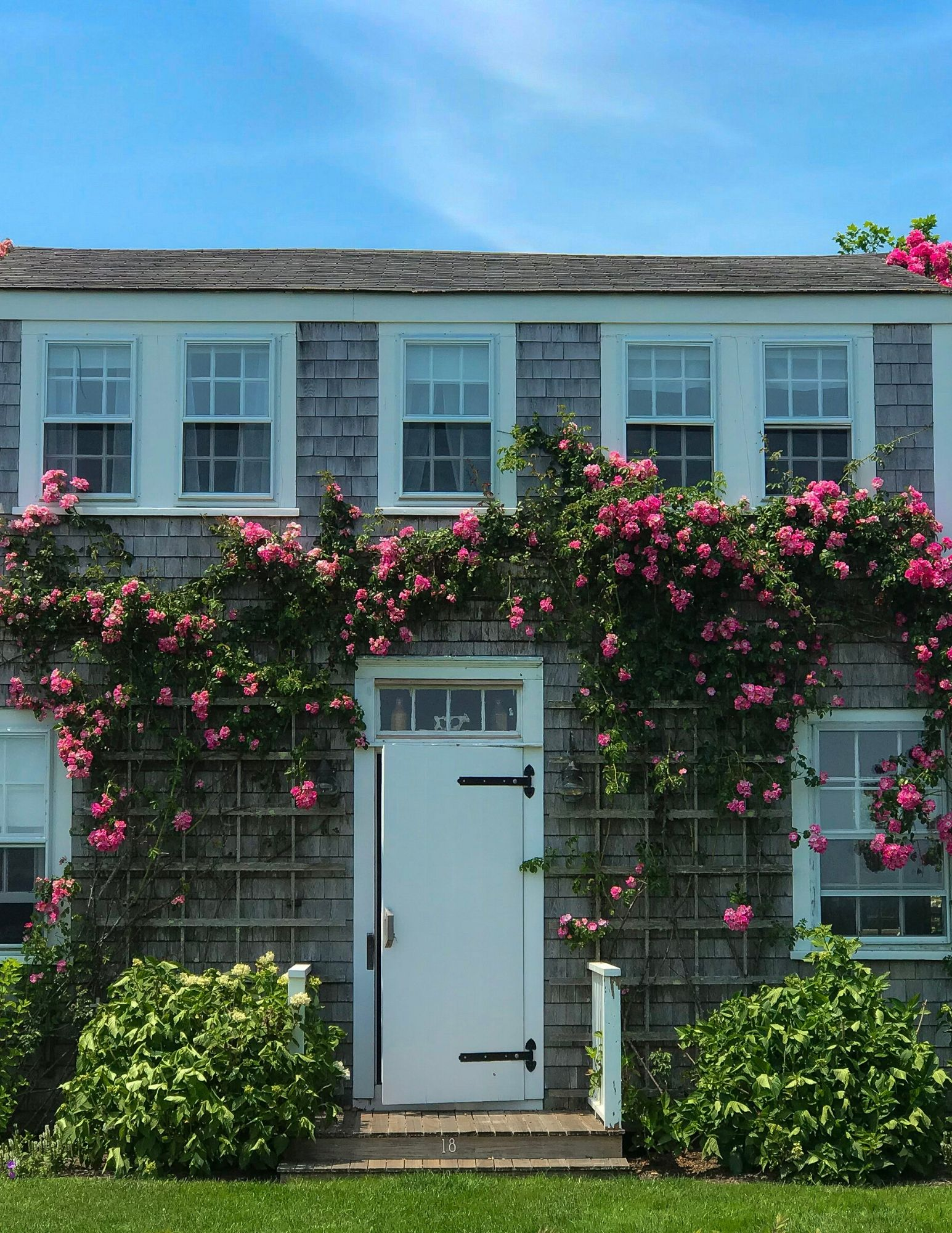 Nantucket Rose Covered Cottages in Sconset-5