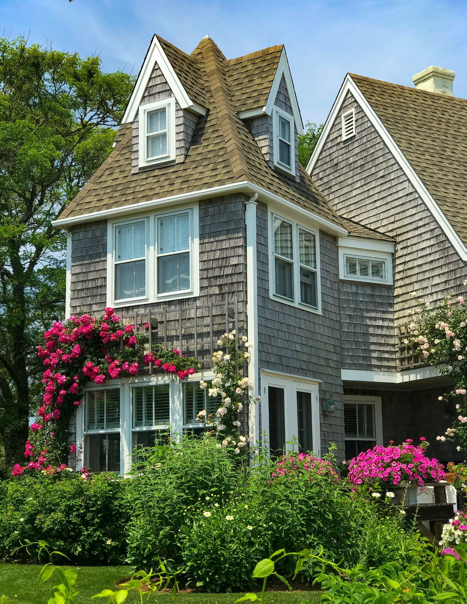 Nantucket Rose Covered Cottages in Sconset-9