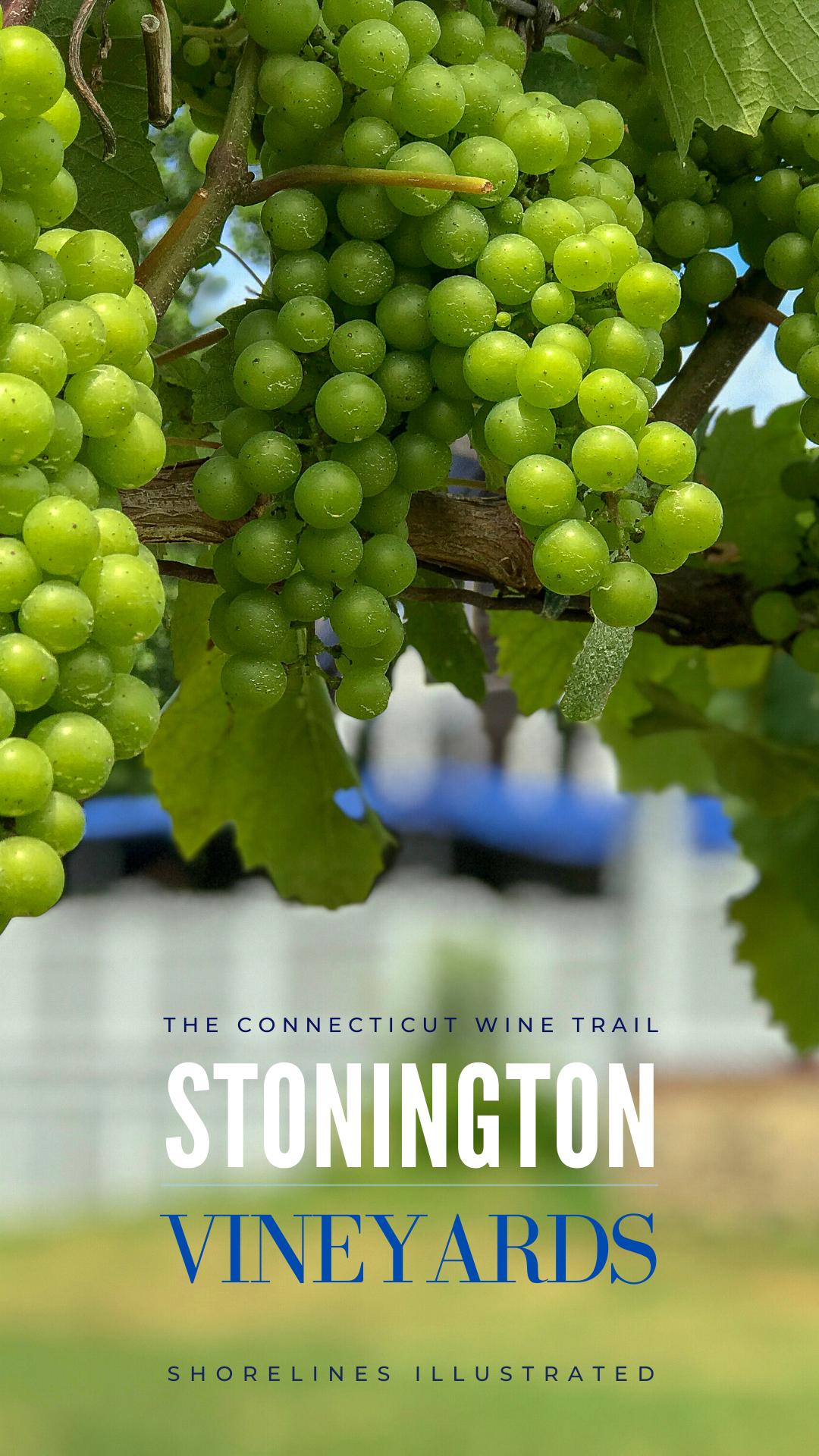 Stonington Vineyards Wine Tasting-6