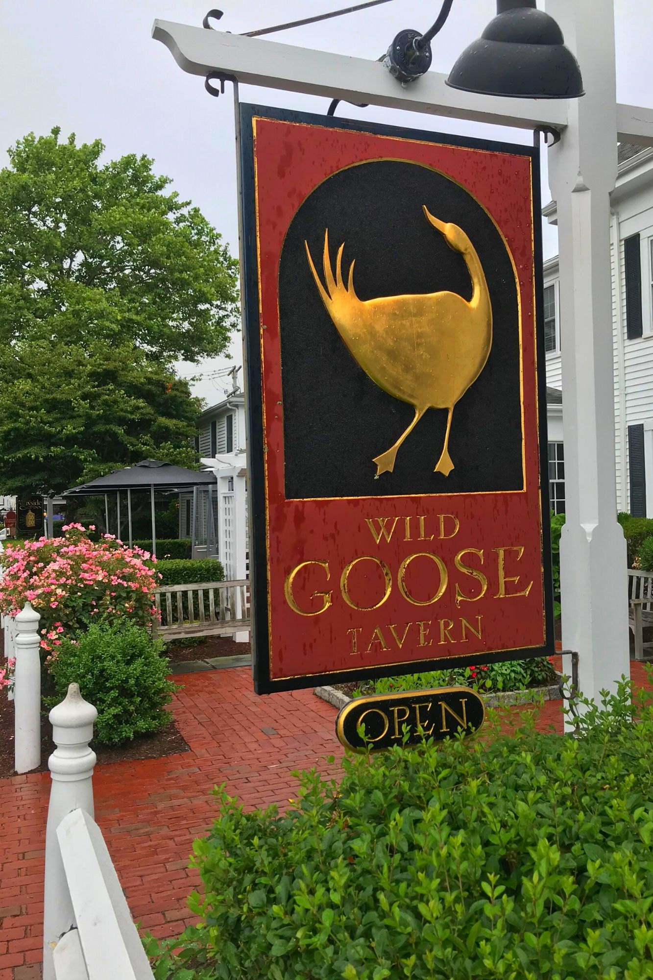 The Perfect Day in Chatham Cape Cod-22
