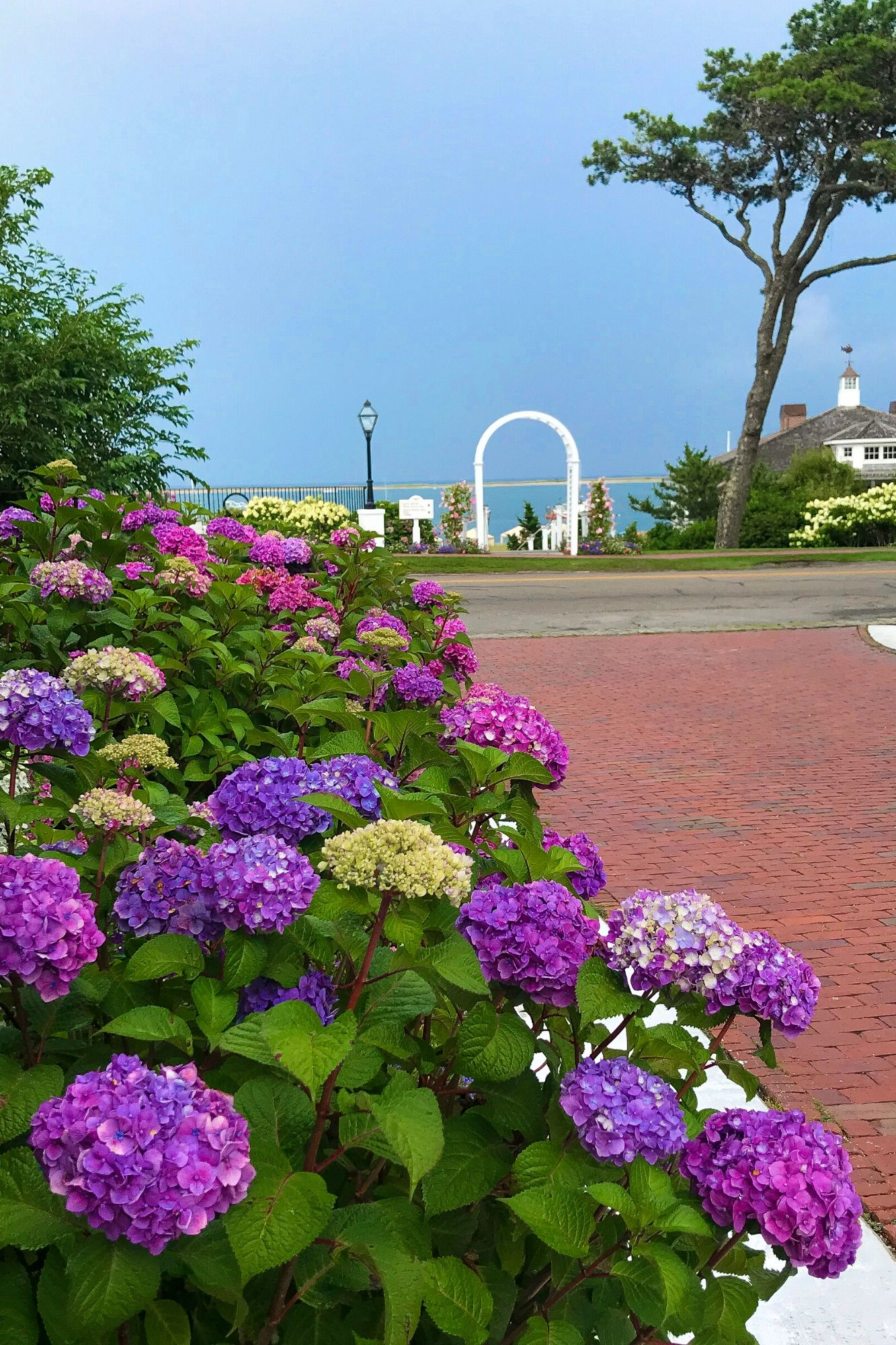 The Perfect Day in Chatham Cape Cod-47