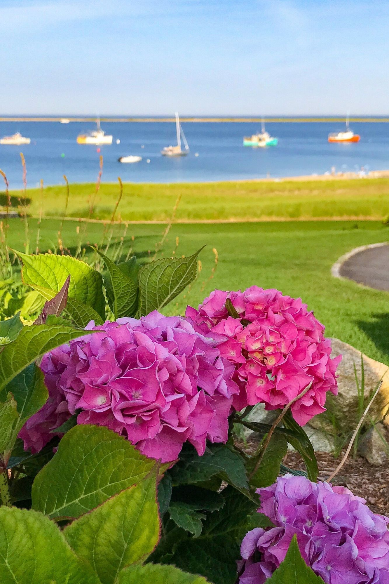 The Perfect Day in Chatham Cape Cod-59