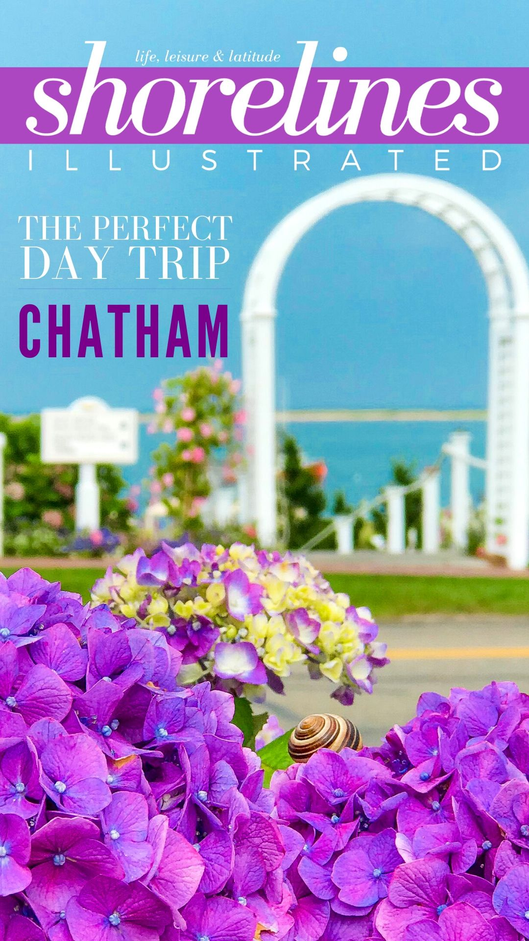 The Perfect Day in Chatham Cape Cod PINS-1