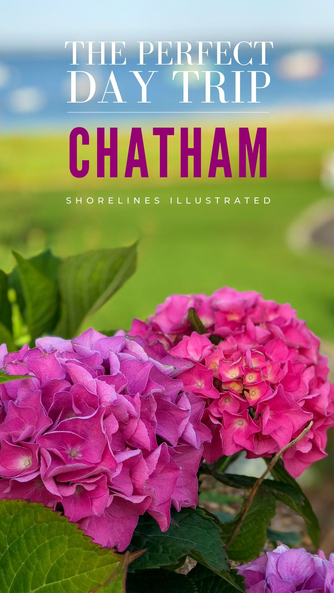 The Perfect Day in Chatham Cape Cod PINS-4