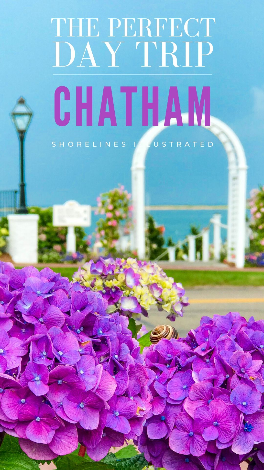 The Perfect Day in Chatham Cape Cod PINS-6