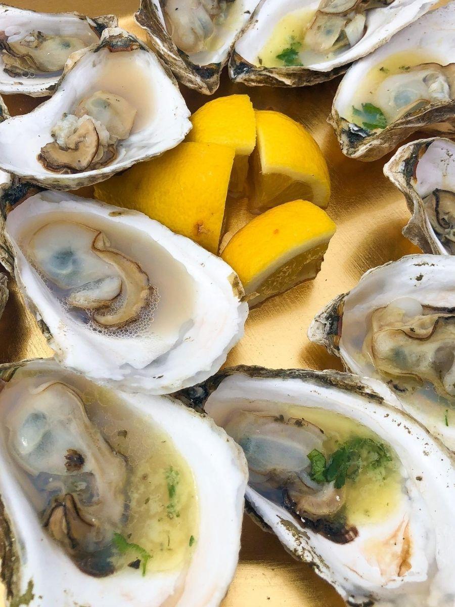 Signature-Oyster-Farm-Tour-Katama-Bay-Oysters-Marthas-Vineyard-13