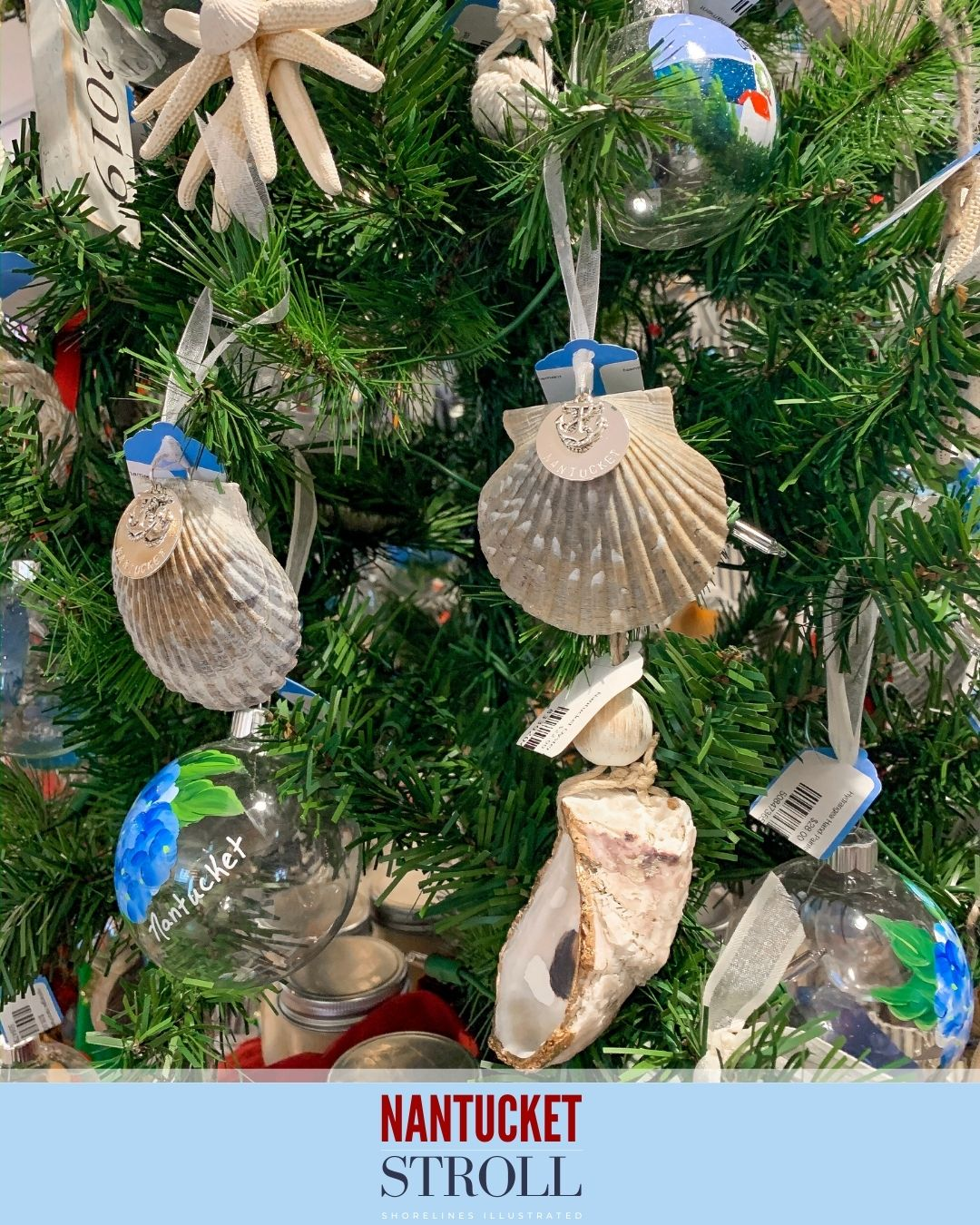 Nantucket Christmas Stroll-27