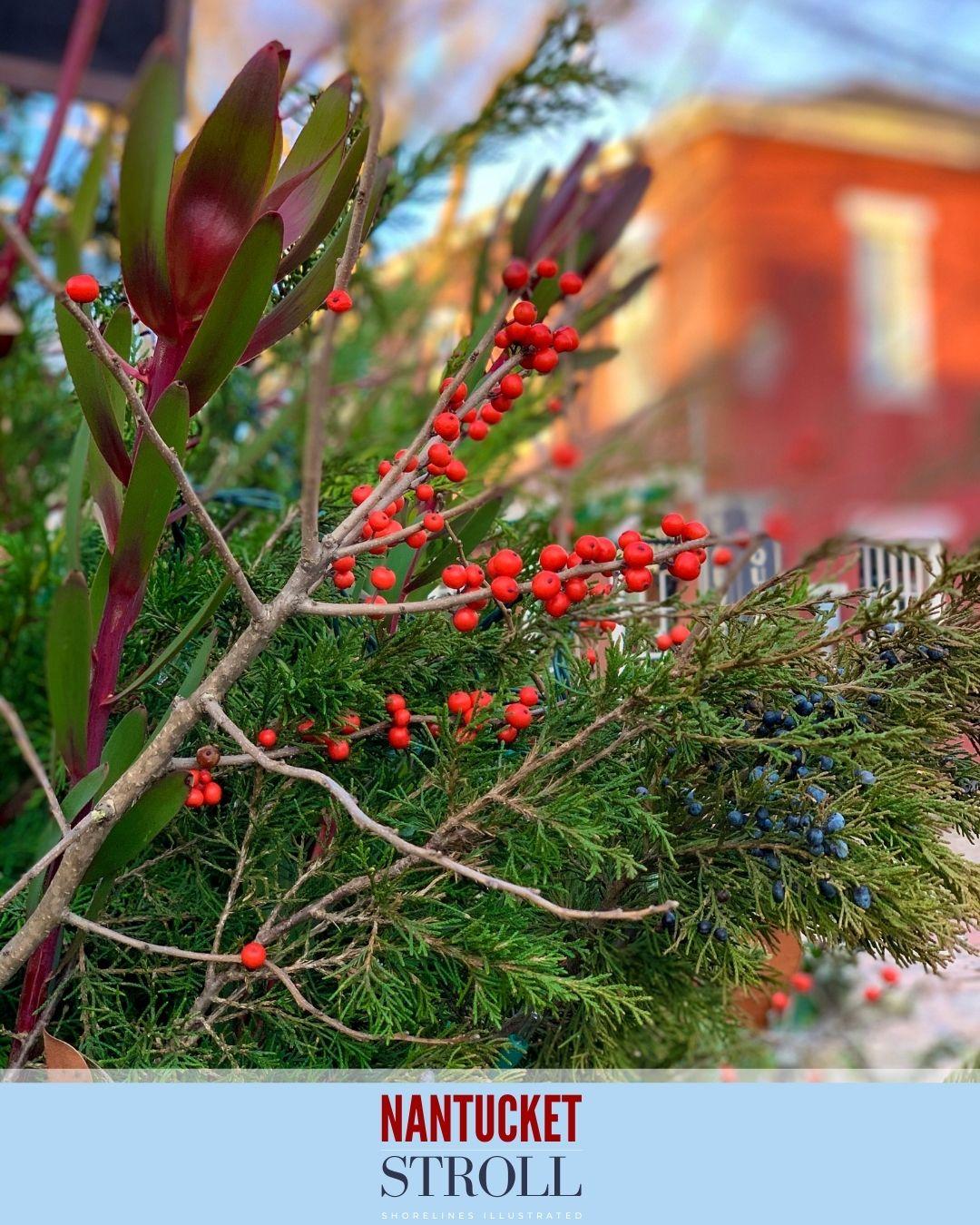 Nantucket Christmas Stroll-73