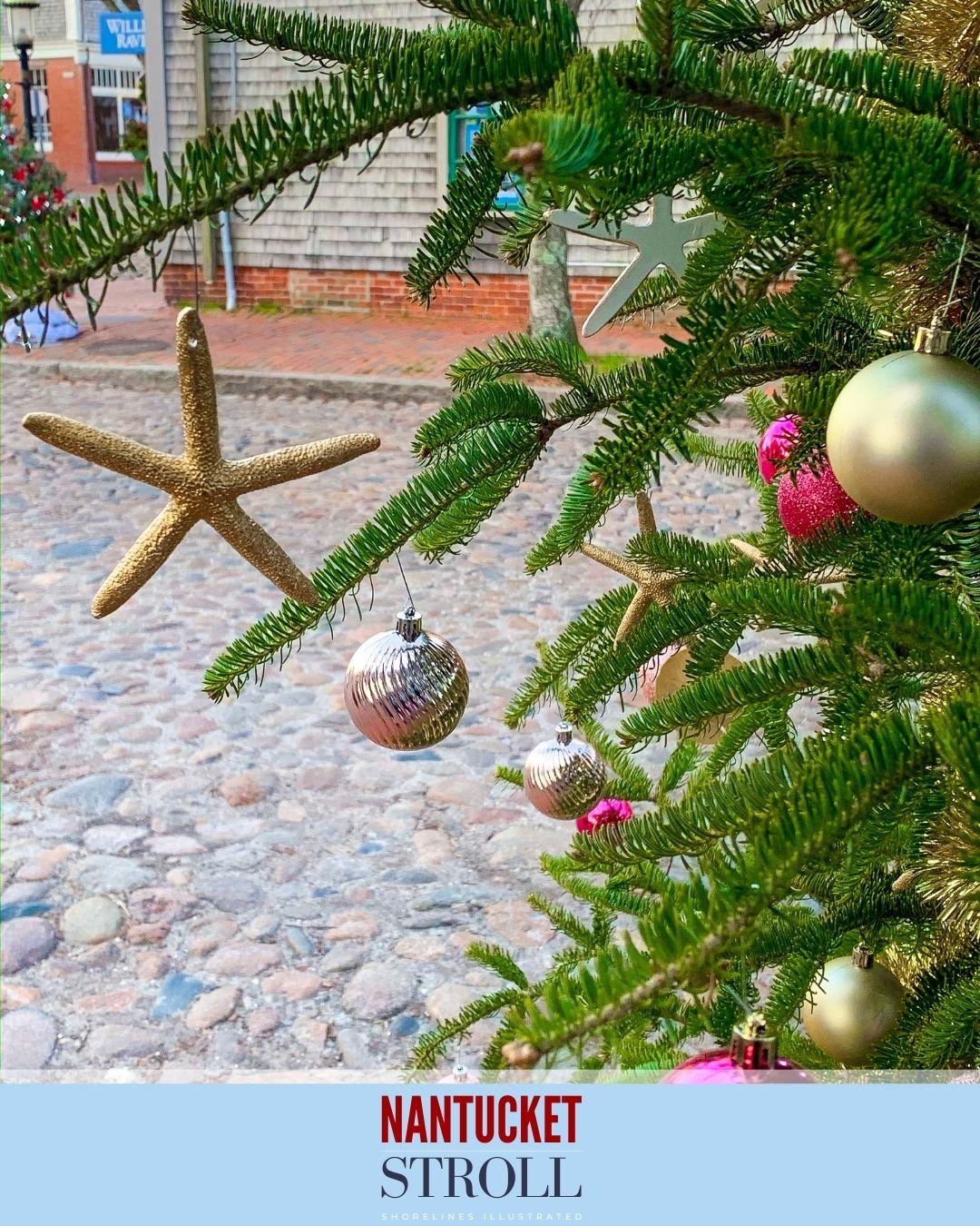 Nantucket Christmas Stroll-76