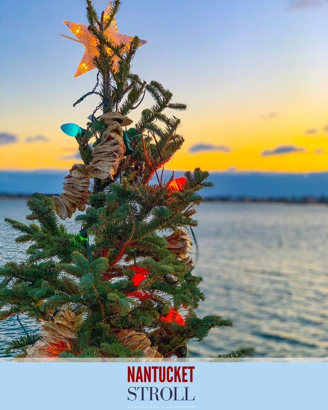 Nantucket Christmas Stroll-97