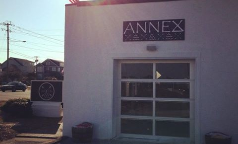 annex-surf-supply-copy-branding-vicki-vasil-480x290