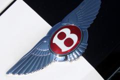 Watts 3D Car Art   Bentley-10